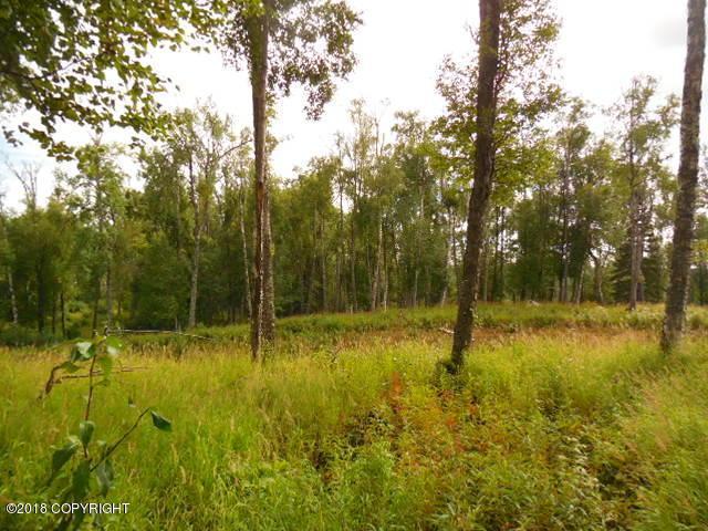 L12 Authentic Road, Soldotna, AK 99669 (MLS #18-14541) :: Team Dimmick