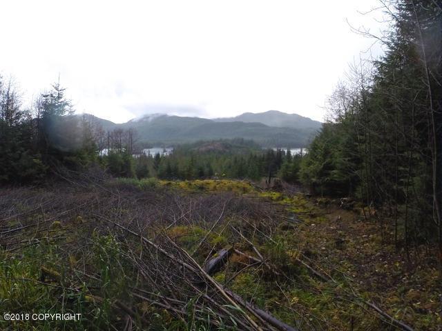 L5 BV Klawock Hollis Highway, Klawock, AK 99925 (MLS #18-18614) :: Alaska Realty Experts
