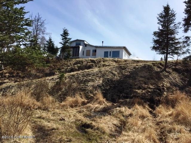 71160 Spinner Court, Anchor Point, AK 99556 (MLS #18-5214) :: Team Dimmick