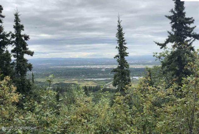 1454 Chena Ridge Road, Fairbanks, AK 99709 (MLS #19-19759) :: Wolf Real Estate Professionals