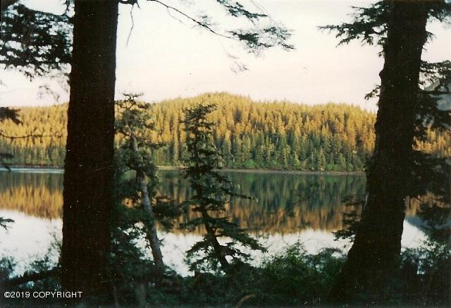 L12 Canoe Pass, Cordova, AK 99574 (MLS #19-3358) :: RMG Real Estate Network | Keller Williams Realty Alaska Group