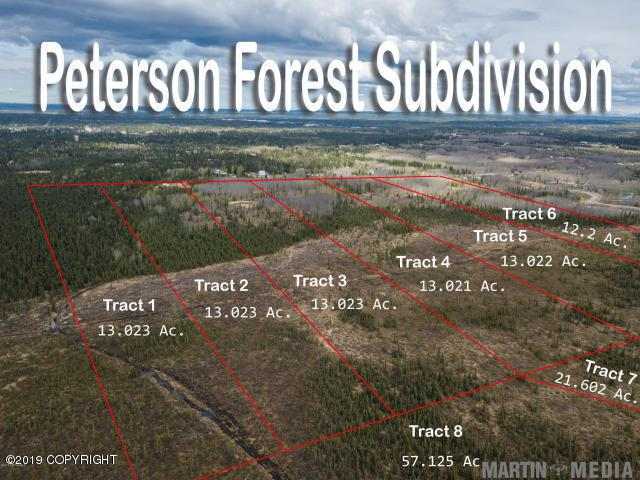 L7 Peterson Forest Park, Soldotna, AK 99669 (MLS #19-3482) :: Powered By Lymburner Realty