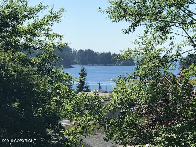 123 Wolf Drive, Sitka, AK 99835 (MLS #19-5262) :: Roy Briley Real Estate Group