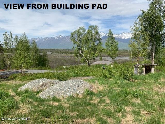 12724 Hunter Creek Drive, Palmer, AK 99645 (MLS #19-8013) :: Core Real Estate Group