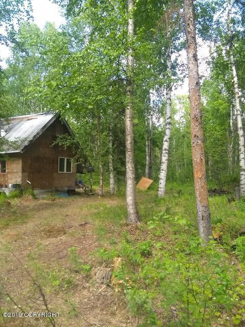 18983 E Secluded Lake Loop, Willow, AK 99688 (MLS #19-9805) :: Wolf Real Estate Professionals