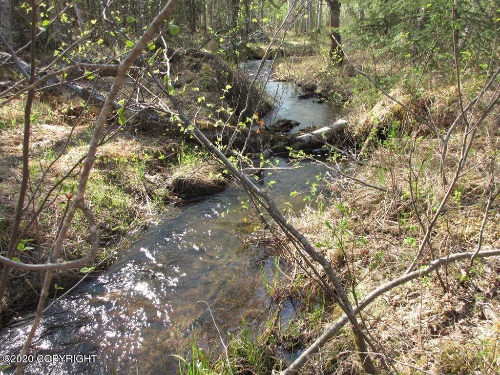 Tract C Meadow Lakes Loop - Photo 1