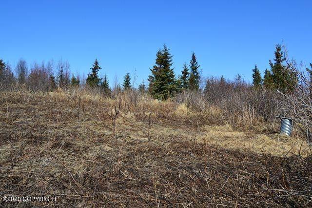 L4 Stacey Lane, Nikolaevsk, AK 99556 (MLS #20-3953) :: RMG Real Estate Network   Keller Williams Realty Alaska Group