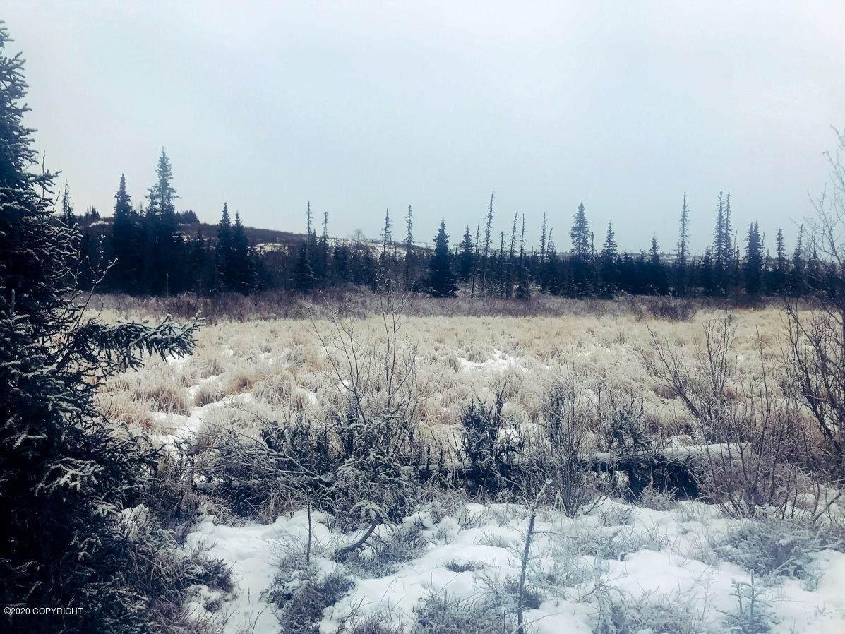 157 Alaskan Wildwood Ranch(R) - Photo 1