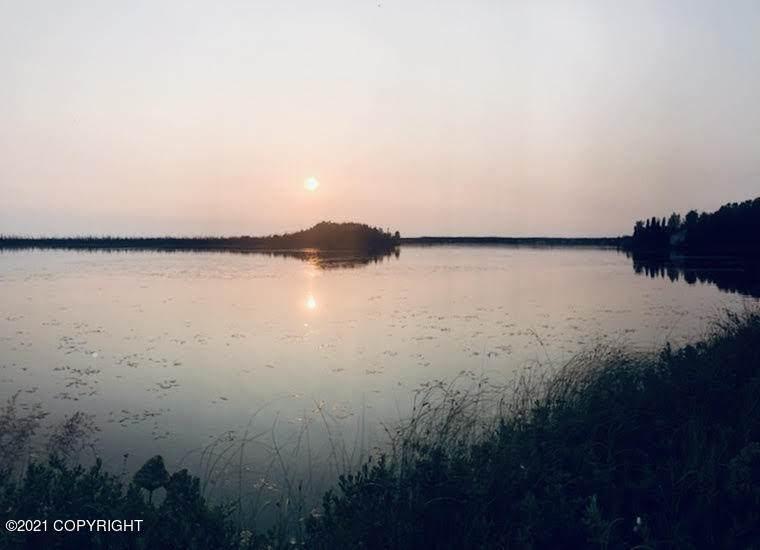 000 Kashwitna Lake - Photo 1