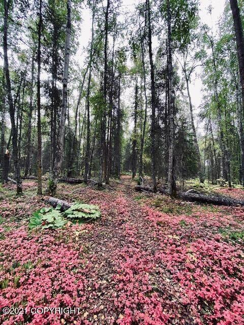 https://bt-photos.global.ssl.fastly.net/alaska/orig_boomver_1_21-11735-2.jpg