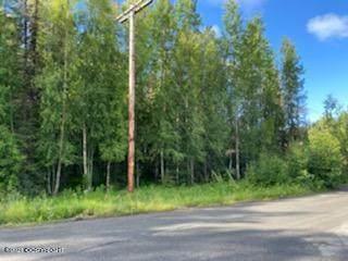 44935 Turnbull Avenue, Soldotna, AK 99669 (MLS #21-12814) :: Wolf Real Estate Professionals