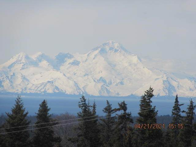 67865 Virginia Avenue, Homer, AK 99603 (MLS #21-5623) :: Wolf Real Estate Professionals