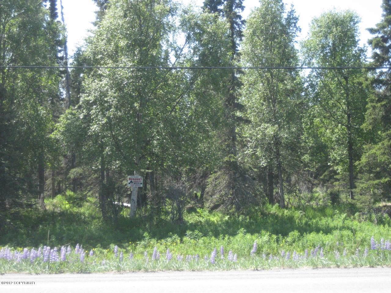 14781 Kenai Spur Highway - Photo 1