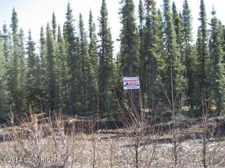 L10 B3 Fore Circle, Soldotna, AK 99669 (MLS #13-10375) :: RMG Real Estate Network   Keller Williams Realty Alaska Group