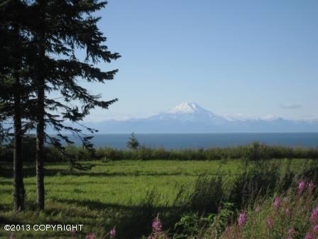 24795 Sterling Highway, Ninilchik, AK 99639 (MLS #13-11876) :: RMG Real Estate Network   Keller Williams Realty Alaska Group