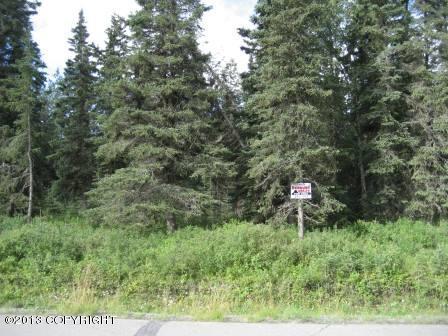 305 Floatplane Road, Kenai, AK 99611 (MLS #13-12658) :: RMG Real Estate Network | Keller Williams Realty Alaska Group