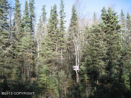 L5A-16 B1 Macholz Avenue, Sterling, AK 99672 (MLS #13-14873) :: RMG Real Estate Network | Keller Williams Realty Alaska Group