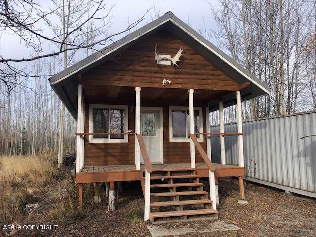 14133 W Jojoba Road, Big Lake, AK 99652 (MLS #19-15863) :: Team Dimmick