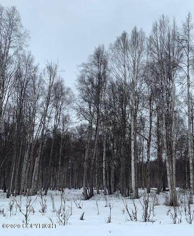 https://bt-photos.global.ssl.fastly.net/alaska/orig_boomver_3_20-5391-2.jpg