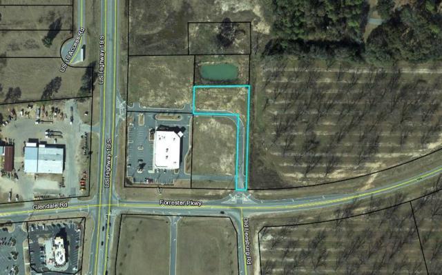 00 Forrester Pkwy, Leesburg, GA 31763 (MLS #140480) :: Crowning Point Properties