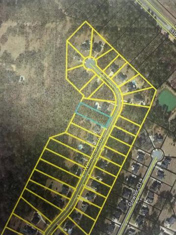 LOT 397 Willow Lake Drive, Leesburg, GA 31763 (MLS #140724) :: RE/MAX