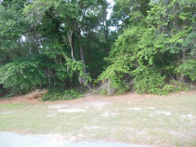 134 Canvasback Drive, Leesburg, GA 31763 (MLS #140785) :: RE/MAX