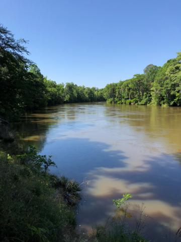 Lot 25 River Trace, Warwick, GA 31796 (MLS #140791) :: RE/MAX
