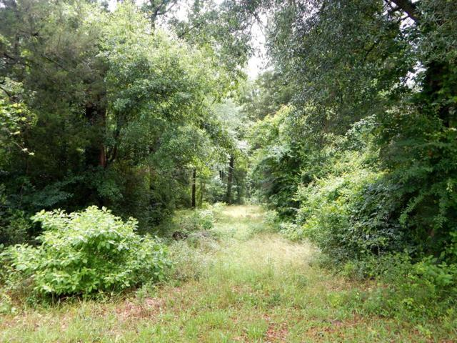 Lot#74 Brightwater Drive, Albany, GA 31707 (MLS #140861) :: RE/MAX