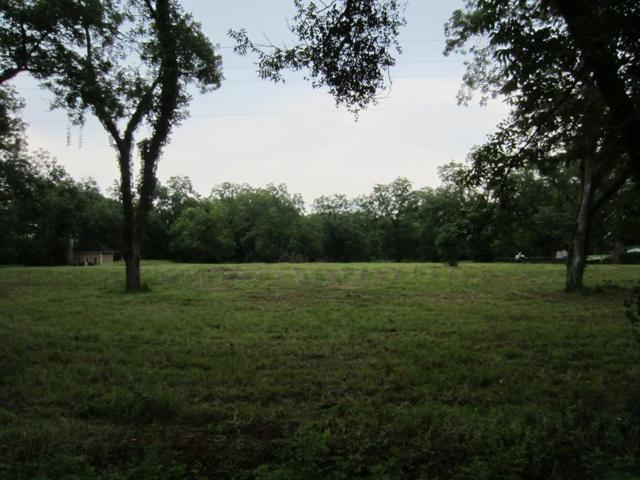 Lot 13 E Crotwell Road, Leesburg, GA 31763 (MLS #141366) :: RE/MAX