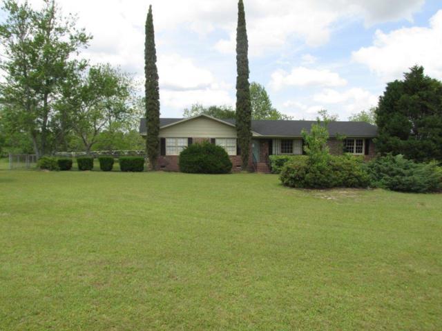 1751 Ten Mile Rd, Rebecca, GA 31784 (MLS #141493) :: RE/MAX
