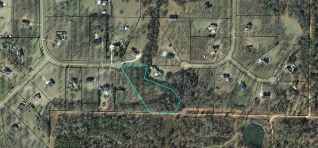 Lot 25 Old Canoy Lane, Leesburg, GA 31763 (MLS #141923) :: RE/MAX