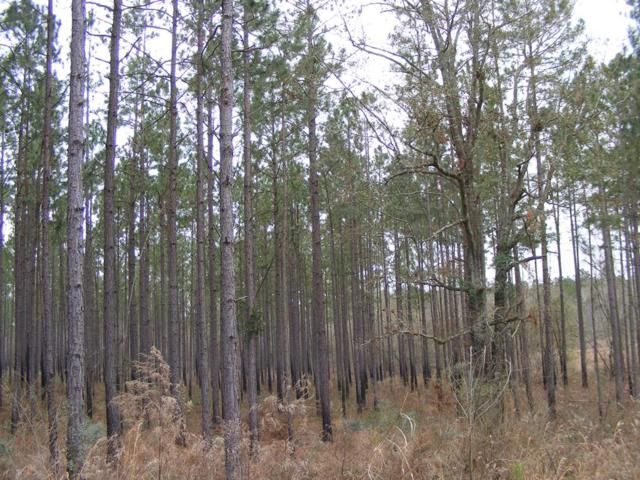 563 Old State Rt 50, Sylvester, GA 31791 (MLS #142298) :: RE/MAX