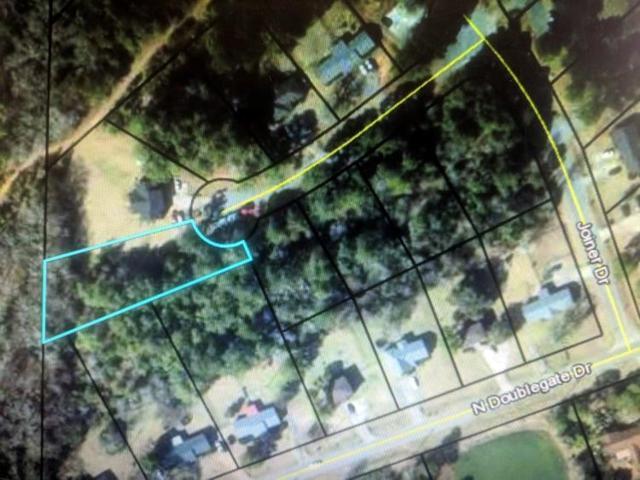 Lot 20 Joiner Drive, Leesburg, GA 31763 (MLS #142467) :: RE/MAX