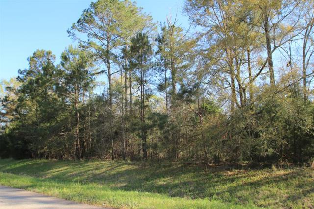 Lot 74 Brightwater Drive, Leesburg, GA 31763 (MLS #142566) :: RE/MAX