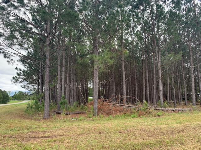 Lot 2 Brittany Lakes Drive, Leesburg, GA 31763 (MLS #142908) :: RE/MAX