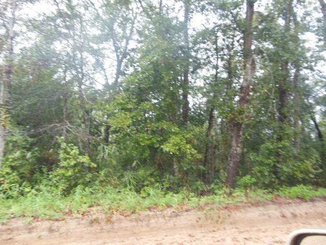 0000 Gosa Rd, Leesburg, GA 31763 (MLS #144051) :: RE/MAX