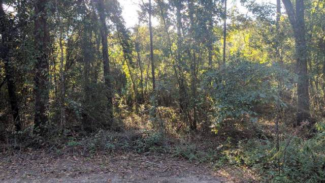000 Appian Way, Baconton, GA 31716 (MLS #144071) :: Hometown Realty of Southwest GA