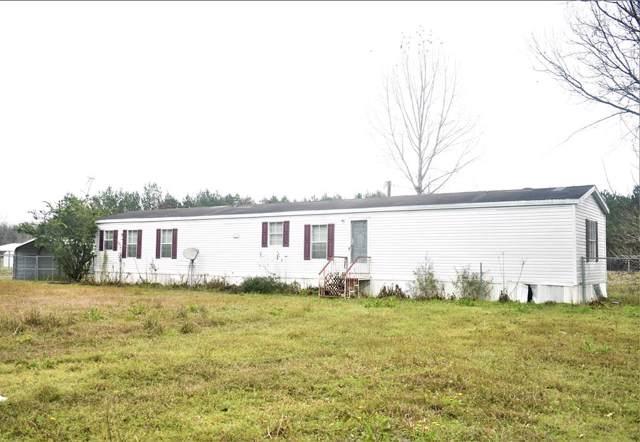 53 Drag Nasty Circle, Georgetown, GA 39854 (MLS #144535) :: Hometown Realty of Southwest GA