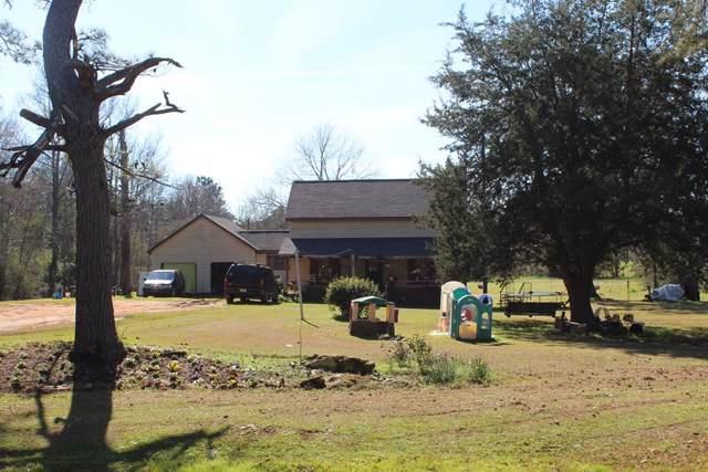766 Betty Wise Road, Bronwood, GA 39826 (MLS #144596) :: RE/MAX