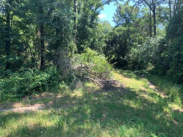 166 White Horse Drive, Leesburg, GA 31763 (MLS #145183) :: Crowning Point Properties