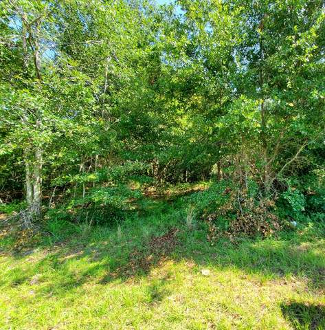 000 Morey Hill Rd, Baconton, GA 31716 (MLS #145316) :: Crowning Point Properties