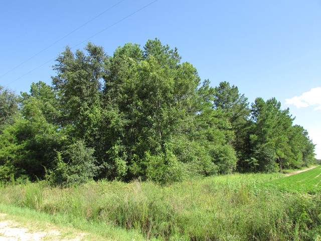 0 Big Pine Road, Blakely, GA 39823 (MLS #145585) :: RE/MAX
