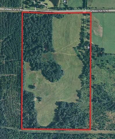 2529 Spring Flats Road, Sylvester, GA 31791 (MLS #146160) :: Crowning Point Properties