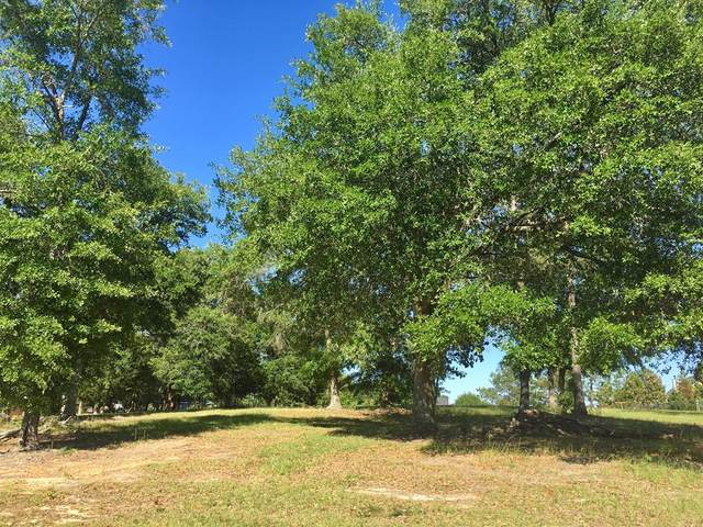 Lot 37 Delores Drive, Leesburg, GA 31763 (MLS #146212) :: Hometown Realty of Southwest GA