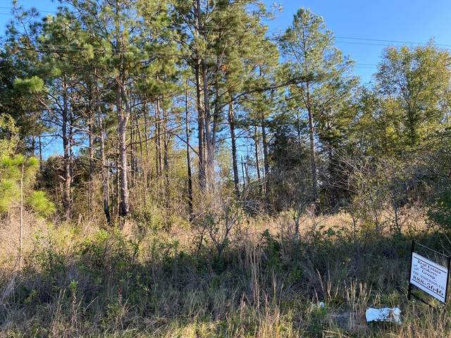 0000 New York Rd, Leesburg, GA 31763 (MLS #146439) :: Crowning Point Properties