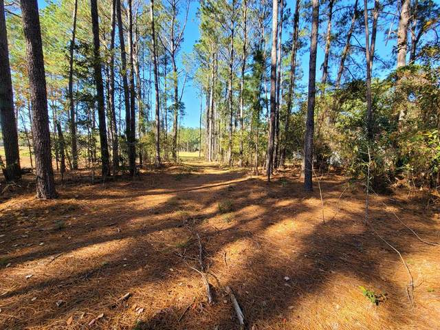 684 Philema Road S, Leesburg, GA 31763 (MLS #146468) :: Hometown Realty of Southwest GA