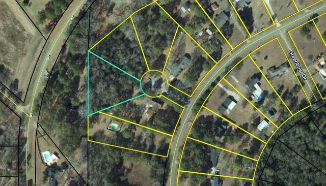Lot 14 Story Lane, Leesburg, GA 31763 (MLS #146636) :: Crowning Point Properties