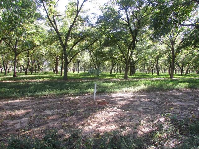 0000 Hwy 62, Arlington, GA 39813 (MLS #146736) :: Crowning Point Properties