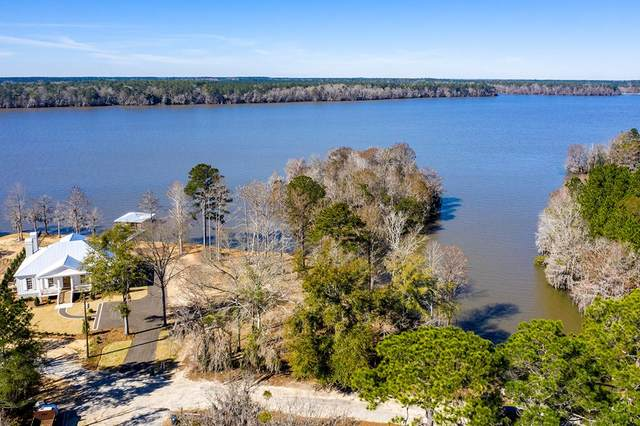 100 Wolfs Thick Road, Cordele, GA 31015 (MLS #147045) :: Crowning Point Properties