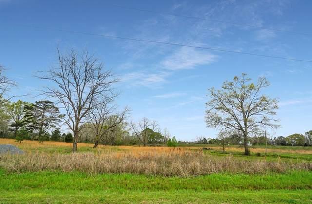 142 Livingston Road, Smithville, GA 31787 (MLS #147218) :: Hometown Realty of Southwest GA